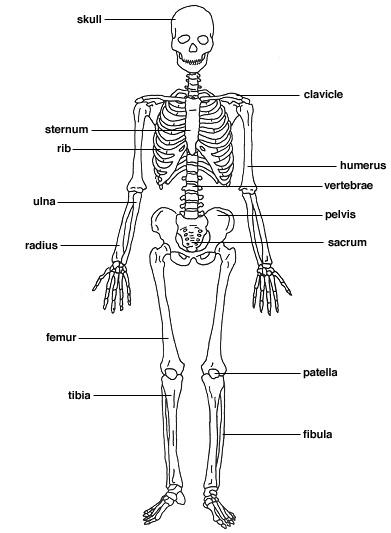 Bone Cancer - 2Gether Konnected