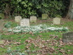 Pet Cemetery Prince Donnalley with snowdrops