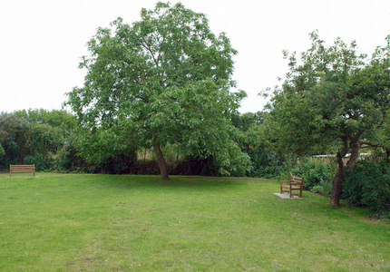 The Orchard - general view