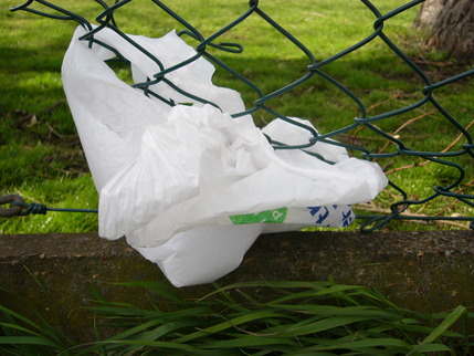 bag in fence