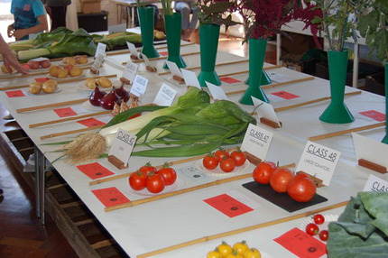 Vegetable Classes