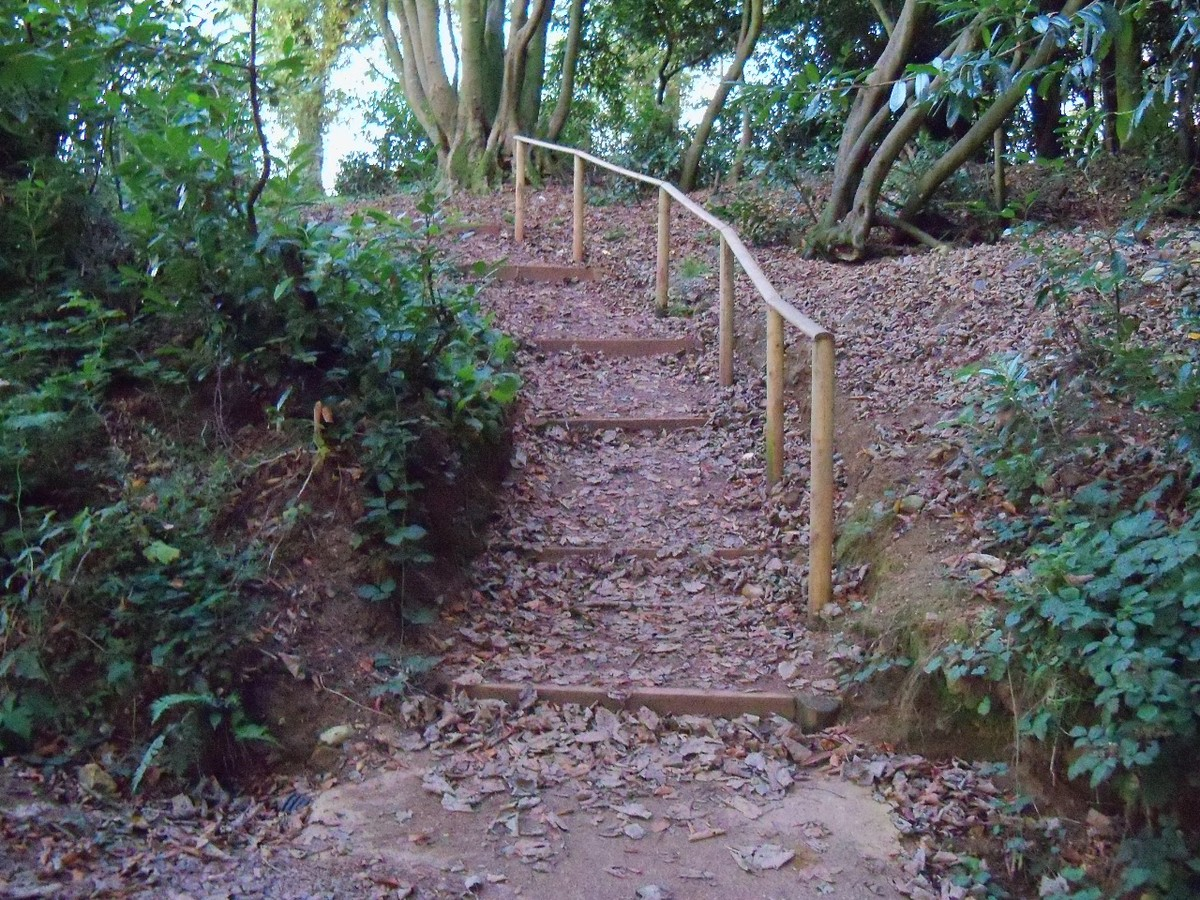 Steps to Otterhead Car Park rebuilt with Handrail