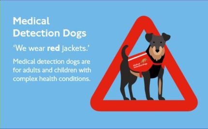 Medical Detection Dogs for Adults and Children with complex health conditions.