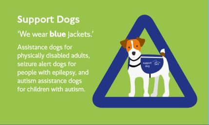 Support Dogs Assistant dogs for Physically Disabled Adults,